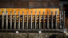20191116_【Ashikaga snap 写真家と撮り歩き 第2回 大門美奈】_02_5_FOV Classic Yellow (foxfoto_archives) Tags: sigma fp mc21 40mm f14 dg hsm a018 developed by photo pro 670 japan tochigi ashikaga snap 日本 栃木 足利 スナップ