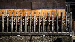 20191116_【Ashikaga snap 写真家と撮り歩き 第2回 大門美奈】_02_4_FOV Classic Blue (foxfoto_archives) Tags: sigma fp mc21 40mm f14 dg hsm a018 developed by photo pro 670 japan tochigi ashikaga snap 日本 栃木 足利 スナップ