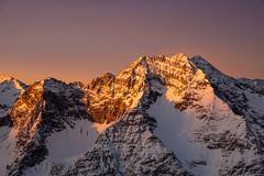 Karwendel (zirano) Tags: gleirschhalltalkette gleirsch halltal kette chain alpen alps tirol tyrol sun set light golden sonnenuntergang berg