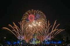 Castle Bursts (Michael Billick) Tags: waltdisneyworld wdw resorts orlando photography amusementparks disneyphotoblog disneyphotography disneyworld disneyparks florida hdr kissimmee colors nikon magickingdom cinderellacastle longexposure fireworks nikond810 happilyeverafter