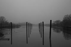 Hafen Haseldorf bei Ebbe (Vasquezz) Tags: fog nebel elbe haseldorf riverelbe haseldorfermarsch bw river mono december sw dezember flus melancholie melancholy coth coth5 cothgg