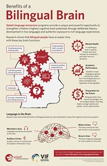 Infographic : Benefits Of a Bilingual Brain (smallpocketlibrary) Tags: free book bookspdf pdf medicine psychology ebook booksmedicine nutrition cosmos universe science physics technology astronomy neurology surgery anatomy biology chemistry mathematics university infographic picture photography animal wildlife fitness insects amazing wonderful incredibility beauty awesome nature smallpocketlibrary
