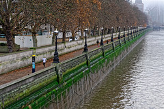 The Long Run (Croydon Clicker) Tags: london river thames water embankment bridge autumn nikon nikkor footpath jogger runner lamps trees morning mist