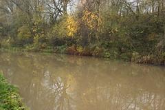 coventry canal (kokoschka's doll) Tags: canal tree reflection nuneaton autumn