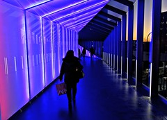 Liverpool walkway (Tony Worrall) Tags: city welovethenorth nw northwest north update place location uk england visit area attraction open stream tour country item greatbritain britain english british gb capture buy stock sell sale outside outdoors caught photo shoot shot picture captured ilobsterit instragram johnlewis shop store passage lit lights purple walk walkway person figure outline color candid