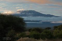 Mount Kilimanjaro, Kenya (Ian Locock Photography) Tags: 2019 amboseli kenya landscape mountkilimanjaro
