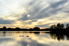 On Silver Pond (NaturalLight) Tags: cirrus clouds water reflections ducks chisholmcreekpark wichita kansas