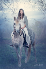 (Cristina Laugero) Tags: elfo cavallo elf horse magic fairy fog