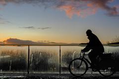 Morning (thijs.coppus) Tags: fiets bicycle bike zon sun zonsopkomst sunrise ochtend morning bahnhof station centraal cs utrecht