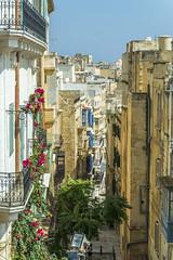 View from Upper Barrakka Garden (fotofrysk) Tags: malta valletta island mediterraneansea europe eu 2019islandtrip september2019 scenes 201909187577