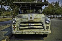 Vintage '54 Dodge Pickup Truck (SonjaPetersonPh♡tography) Tags: circa1954 dodgepickup anacortes washington washingtonstate stateofwashington nikon nikkor nikonafsdxnikkor18300mmf3556gedvr oldtruck vintage vintagetruck dodge pickup truck antique antiquetruck