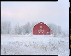 Winter Red (AlexBurke) Tags: landscape film 4x5 large format colorado prairie plains red barn snow winter portra kodak