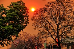 Argyle Street. (Ian Ramsay Photographics) Tags: camden newsouthwales australia sydney basin bushfires devastation argylestreet scene sunset filters eerie sight orange buildings