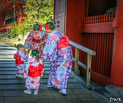 Seven Five Three (Don's PhotoStream) Tags: mother november colorful shintoshrine travel 1125f56 cruise hakama don'sphotostream 1430f4 japan kimono 753festival children