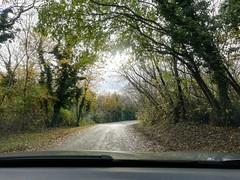 Medea, FVG Italy (JdLZz) Tags: hills autumn trees
