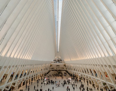 Oculus terminal activity (Adaptabilly) Tags: ceiling iphone usa transportation shotonmoment manhattan travel oculus people symmetry newyork pattern santiagocalatrava terminal architecture skylight newyorkcity unitedstatesofamerica