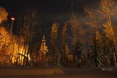 night calls (~Jim Peacock~) Tags: night nightsky stars nature orion winter autumn wisconsin snow