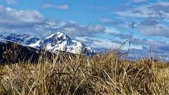 Depuis la station de Peyragudes, vers le Nord Ouest, Pyrénées, France (olivier.amiaud) Tags: agudes pyrénées germ montagne pâturage paysage sony alpha 6000 herbe graminée neige