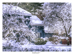 Dec 2019 Winter Storm, NH USA (Pearce Levrais Photography) Tags: winter storm snow snowfall wind snowflakes house tree landscape white bush plant covered sony a7r3 hdr ilce7rm3