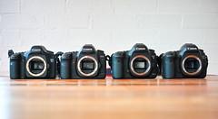 High Fives (Keith Midson) Tags: canon 5d 5dmkiii 5dmkii 5dsr cameras camera full frame sigma dp2m merrill