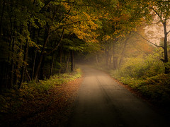 Radiant Light (James Korringa) Tags: country road light beam vermont countryside scenic forest trees fall autumn color