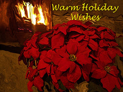 Warm Holiday Wishes (kfocean01) Tags: winter christmas flower flowers card vivid light red color filters photoshop photomanipulation creativephotography painting art artsy awardtree holiday artdigital