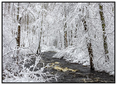 2019 - Indian Head River (Kurt Tarvis) Tags: mass massachusetts winter snow scene snowing river ice outdoors nikon d7000 indian head plymouth county cold