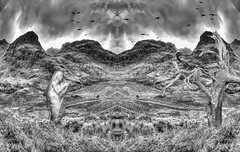 The Valley of Sorrow (beelzebub2011) Tags: netherlands scotland canada composite mountains tree raven maid bw monochrome mirrorimage hdr