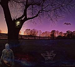 The Dark (Rollingstone1) Tags: dark night trees sky spirit zombie devil horror fear park bat vivid colour atmosphere outdoor art artwork