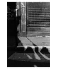 (billbostonmass) Tags: trix 400 ddx film 14ddx800min68f m6 50mm summicron epson v800 boston massachusetts