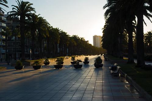 morning light - Passeig de Jaume I - Salou, Tarragona, Catalonia, Spain - Oct 2019