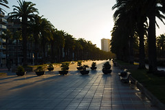 morning light - Passeig de Jaume I - Salou, Tarragona, Catalonia, Spain - Oct 2019 (Dis da fi we) Tags: morning light passeig jaume i salou tarragona catalonia spain promenade