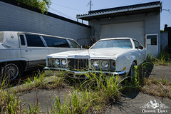 Fukushima Abandoned Cars, Japan (ObsidianUrbex) Tags: abandoned car cars dealer digitalphotography fukushima haikyo japan photography urbanexploration urbex