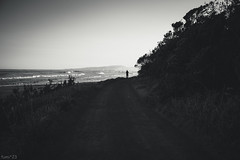 海 (fumi*23) Tags: ilce7rm3 sony cosina voigtlander 40mm voigtlandernoktonclassic40mmf14mcvm a7r3 monochrome bw blackandwhite nokton miyazaki seascape sea seaside 海 宮崎 モノクロ bnw ノクトン コシナ フォクトレンダー