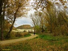 Se acaba el otoño (kirru11) Tags: paisaje camino otoño gente peña roca hojas persona árboles quel viaverde larioja españa kirru11 anaechebarria canonpowershot