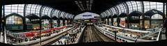Hamburg Hauptbahnhof platforms (Tony Shertila) Tags: germany europe hamburg ©2019tonysherratt building station train deutschland platform structure centralstation mainline concorse gopro 20190920093416 architecture pano arches
