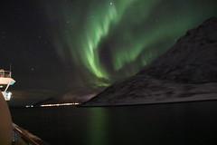 Aurora Borealis - Northern Lights, Norway. (Seckington Images) Tags: auroraborealis lights norway flickr northern green