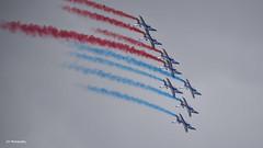 formation (JC-BX) Tags: nikon avions aviation patrouilledefrance alphajet jet aircraft airplane