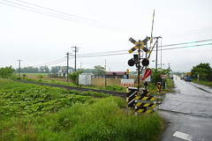 IMG_6958 (Ethene Lin) Tags: 日本 北海道 十勝 鐵道 軌道 平交道 草地