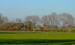 LANDSCAPE - On  Explore (JaapCom) Tags: jaapcom landscape trees zalk dutchnetherlands natural holland landschaft landschap landed