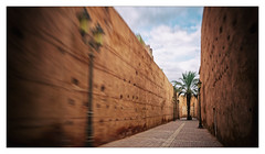 Le palmier au bout de la rue... (Jean-Louis DUMAS) Tags: maroc rue ruelle ocre palmier arbre voyage voyageur trip travel traveler ville marrakech