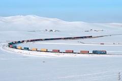 Cold day... (N.Batkhurel) Tags: season winter sky snow trains trainspotting transport railway railfan railroad locomotive landscape contiener 2te25km mongolia monrailpic ngc nikon nikondf nikkor natur 24120mm