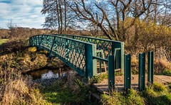 A walk out. (CWhatPhotos) Tags: cwhatphotos flickr photographs photograph pics pictures pic picture image images foto fotos photography durham city north east england uk county walk out about december day tree trees green sky skies bridge bridges cross crossing over going countryside