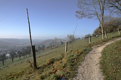 ...on the way up... (shallowcreek) Tags: natur nature wiese meadow berg hill landschaft landscape himmel sky herbst autumn austria baum tree