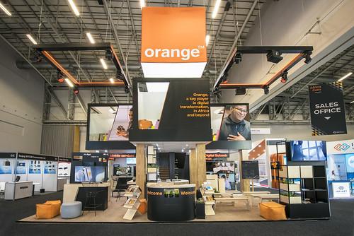 _AFC3583.Orange