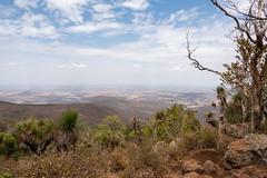 Dry (armct) Tags: bunyamountains mt kiangarow drought subtropical rainforest bush forest plains farmland smoke haze horizon landscape rocks kangaroo hide scrape grasstrees xanthorrhoea sky cloud hilltop view scenic