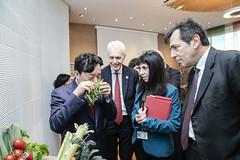 12193s9575 (FAO News) Tags: fao headquarters rome italy signing agreement centroagroalimentarediroma car mercatigenerali generalmarkets directorgeneral qu