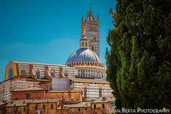Duomo di Siena (Ivo.Berta) Tags: italy italia europe city town siena history old archtiecture building summer holiday vacation blue green tree house orange sky view window church cathedrale