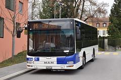 Autobus MAN Lion's City n°314 en service sur la ligne 415. © Marc Germann (Marc Germann) Tags: trolleybusnawbt25 retrobus convois nawhesssiemens transportspublics transport man lutrycorniche articulé articulation vanhool autobusvanhoolnewag300 ligne9 ligne54 ligne415 transportspublicslausannois soleil par brise naw fbw remorques hesskièpe hessag