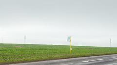 Berlin's Exurbs | Berliner Speckgürtel 6 (Bernd Walz) Tags: busstop berlin´sexurbs speckgürtel rural countryside road transformedlandscape artificiallandscape newtopographics landuse brandenburg fineart landscape fog mist farmland minimalistic minimalism